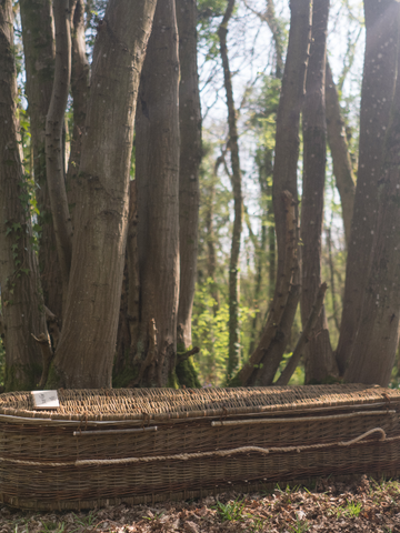 Natural Willow Coffin - Sussex Willow Coffins
